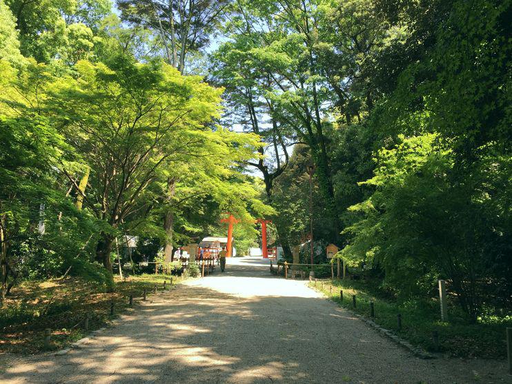 下鴨神社参道